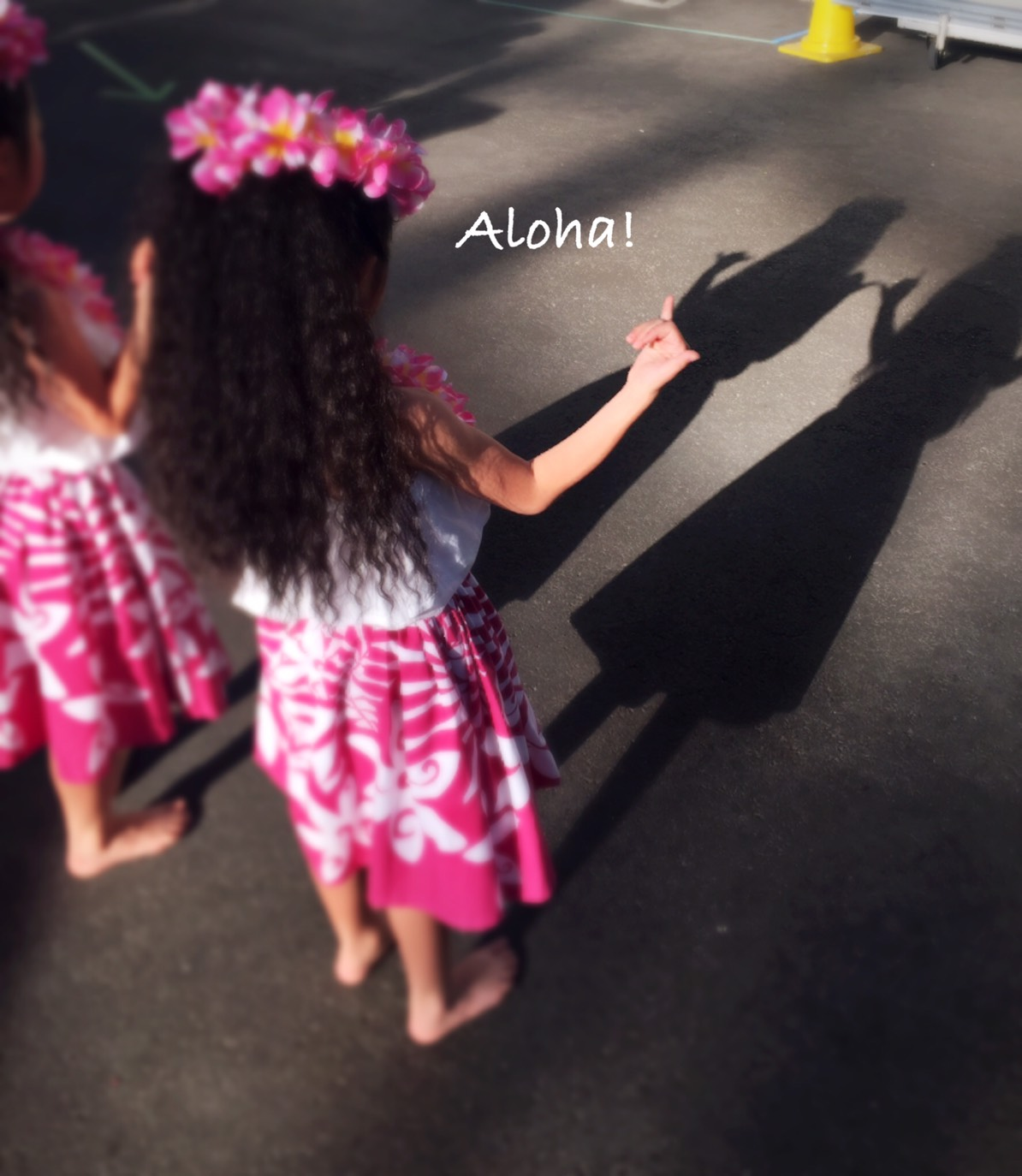 第1回Hawaiian WAI KULA Days 2017は盛況のうちにフィナレーを迎えました!